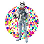 TH SpaceHusky
