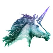 TSM UnicornSketch